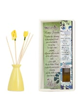 Ceramic Reed Diffuser Set - Skycandle