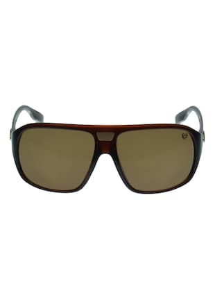 Phat FarmPF-5053-DBWN Sunglass -  online shopping for Sunglasses