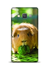 Guinea Pigs Samsung Galaxy A3 Phone Case  available at Limeroad for Rs.799