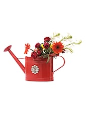 Red Iron Watering Can - Consilium World