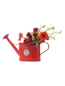 Red Iron Watering Can