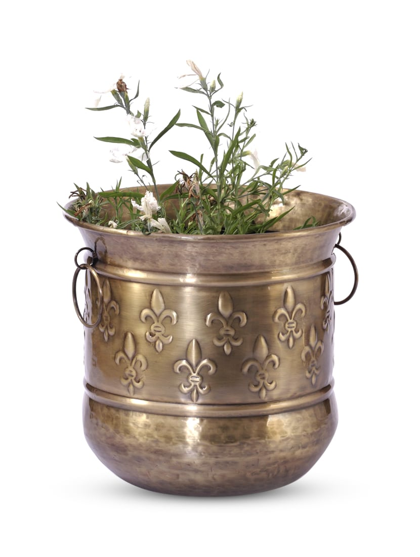 Gold Iron And  Brass Planter - Papallona Designs