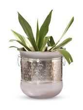 Gold Iron And  Nickel Finish Planter - Papallona Designs