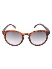 Black  Full Framed Oval Sunglasses - By