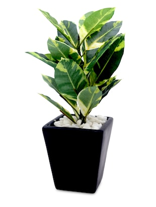 Artificial Bonsai Plant with Ceramic Pot