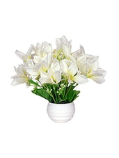 Loxiaa White Lily  Artificial  Flower With  Pot (18Cm) - By