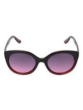 MTV MTV-131-C4 Purple Cat-eye Sunglasses - By