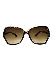 Zyaden Brown Oversized Sunglasses For Women 356 - By