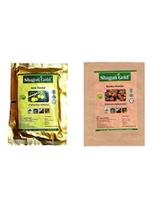 Shagun Gold 100% Natural Amla And Aritha Powder (Pack Of 2) 100Gm - By