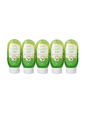 Globus Green Tea & Tea Tree Face Wash Pack Of 5 - By