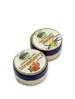 Strawberry & Vanilla Lip Balm (Set of 2) - Last Forest