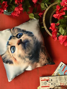Purr-fect Cushion Cover - Yolo By Spread