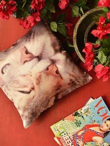 Cat Love Cushion Cover - Yolo By Spread