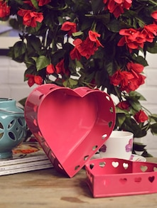 Set Of Two Heart Shaped Containers