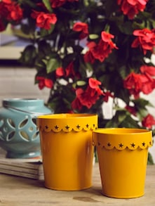 Vibrant Canary Yellow Planters