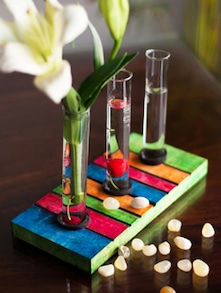 Quirky Multicoloured Wooden Test Tube Planter