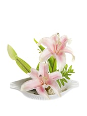Boat Style Ceramic Pot With Light Pink Lily Flowers - Fennel