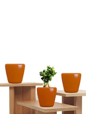 Pack Of 3 Orange Planters - Yuccabe Italia