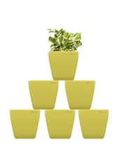 Pack Of 6 Yellow Planters - Yuccabe Italia