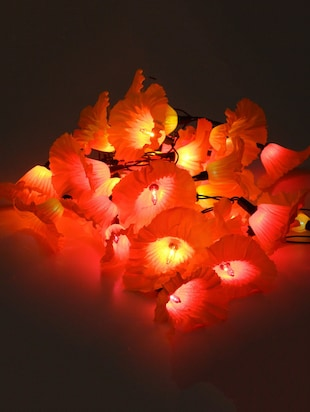 Orange Plastic Flower String Light