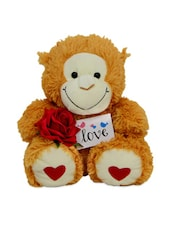 Cute Gifts With Monkey Teddy & Rose - Gifts By Meeta