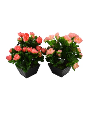 Artificial Dry Rose Bush ( Set Of 2) With Pot