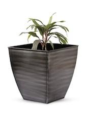 Square Base Iron Planter - Magnolia Kreations
