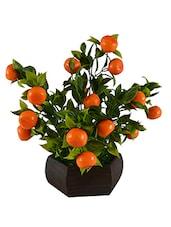 Thefancymart Artificial Bonzai Fruit Tree Orange (size 10 Inchs/ 25 Cms) With Wood Hexagun Pot-0227-882 - By