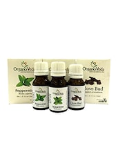 OrganoVeda Spearmint+ Peppermint+ Clove Bud Essential Oils, Minty And Refreshing Breathe (15ml Each) - By