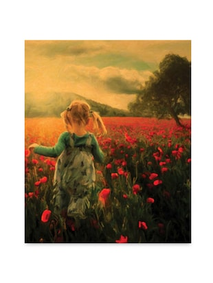 Multicolor frameless canvas girl in field painting