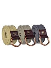 Pack Of 3 Multi Colored Canvas Belt - By - 12890485