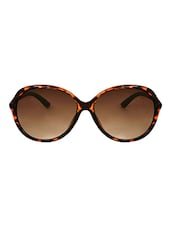Zyaden Brown Oval Sunglasses For Women 347 - By