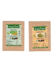 Shagun Gold 100% Natural Brahmi Leaves And Bhringraj Leaves Powder (Pack Of 2) 100Gm - By