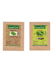 Shagun Gold 100% Natural Neem Leaves And Tulsi Leaves Powder (Pack Of 2) 200Gm - By