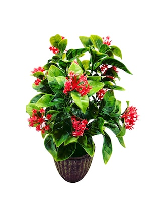 Artificial Plant With Large Green Leaves and Red Flowers - 14902080 - Standard Image - 2