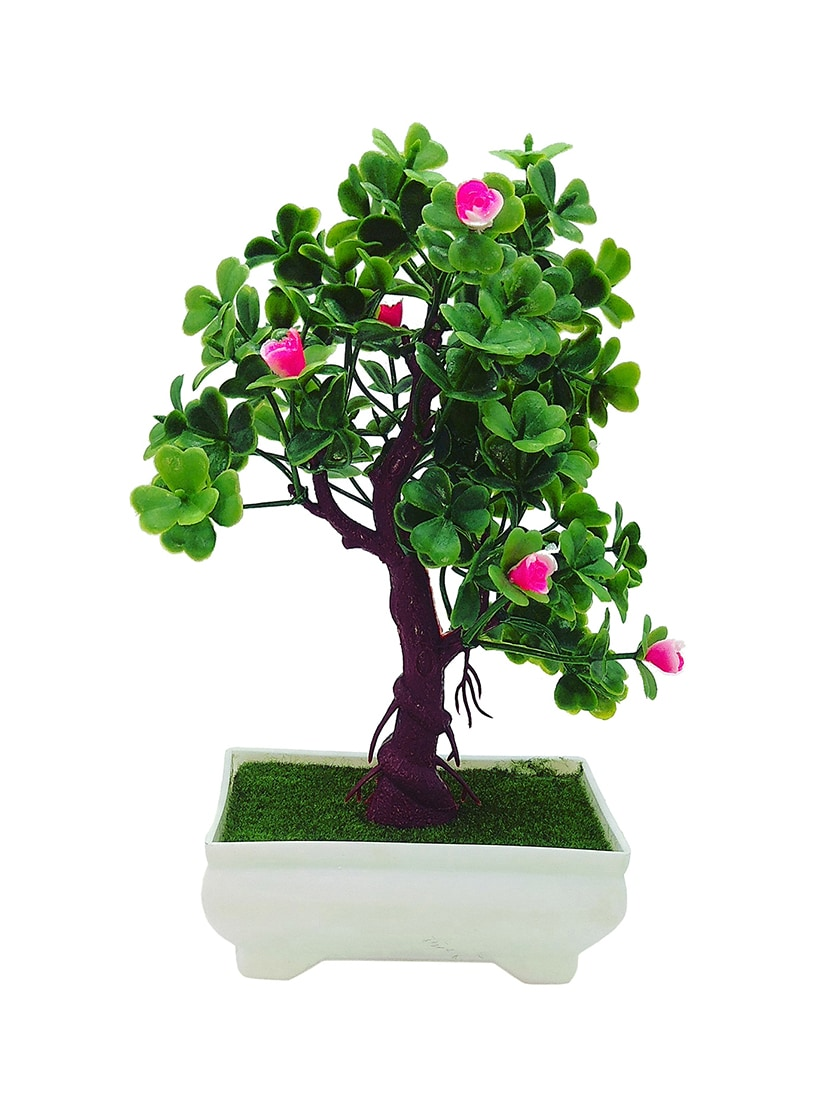 Buy 3 Branch Bonsai Tree With Clover Shaped Leaves And Pink Flowers