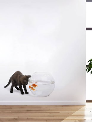 Rawpockets Wall Decals ' Cat and Fish Bowl Abstract '  Wall stickers (PVC Vinyl) Multicolour - 15733902 - Standard Image - 2