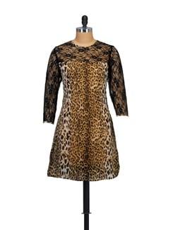 Animal Print Lace-Inset Dress - Myaddiction