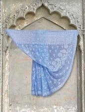 Patel Blue Chikankari Saree - Ada