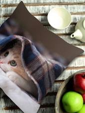 Kitten In Blanket Cushion Cover - Stybuzz